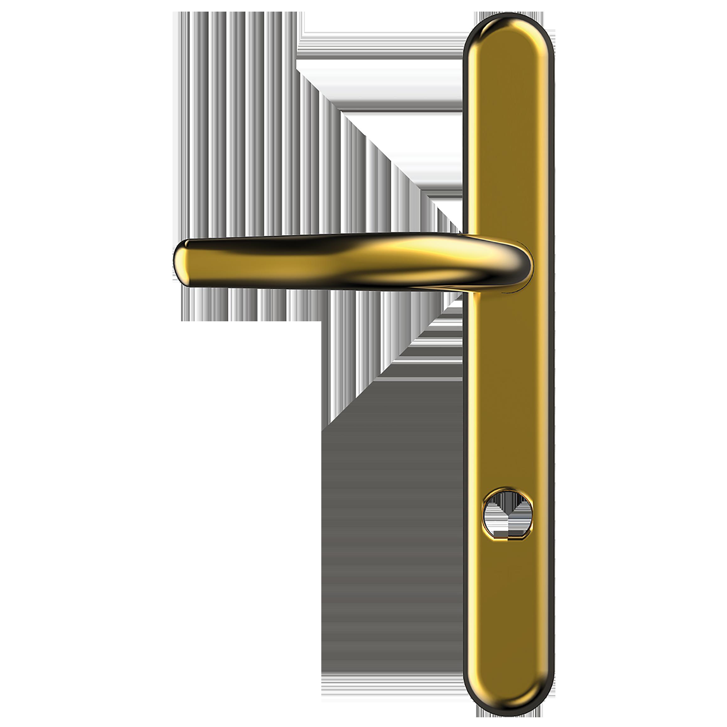 Uap Long 243mm Backplate High Security Front Door Handle