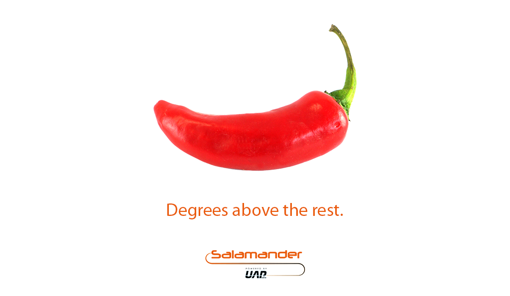 Chilli Advert